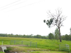 Koah land for sale