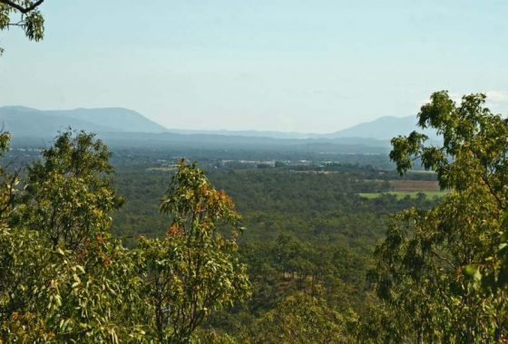 Koah Realty, Kuranda Properties for sale, Kuranda, Koah, Mareeba, Davies creek land for sale, davies creek,
